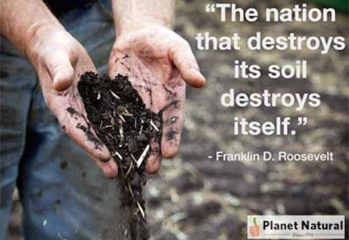 healthy-soil-quote